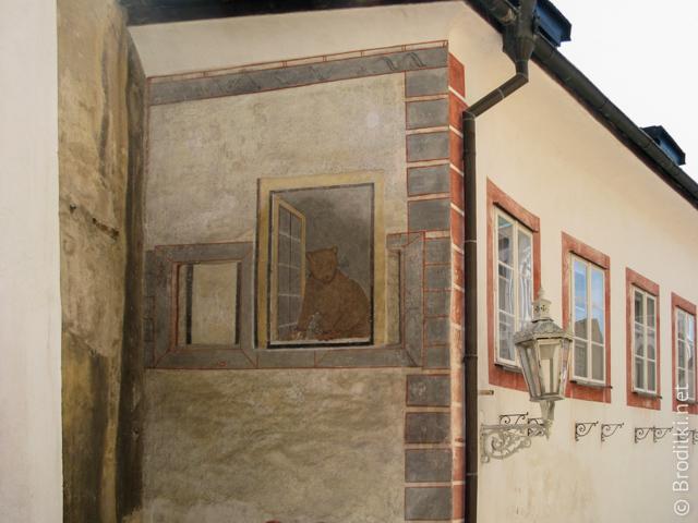 Ложное окно с медведем, Чешский Крумлов