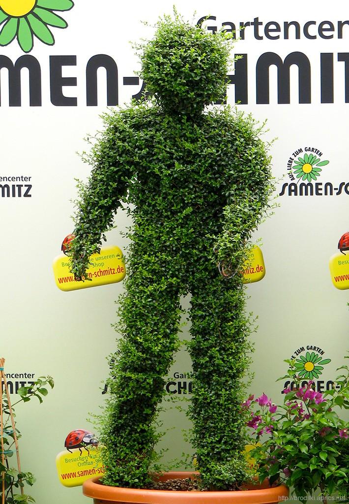 Зелёные человечки в Мюнхене