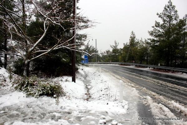 Мокрый снег в районе деревни Платрес, горы Троодос