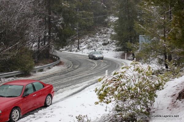 Горная дорога в районе деревни Платрес, горы Троодос
