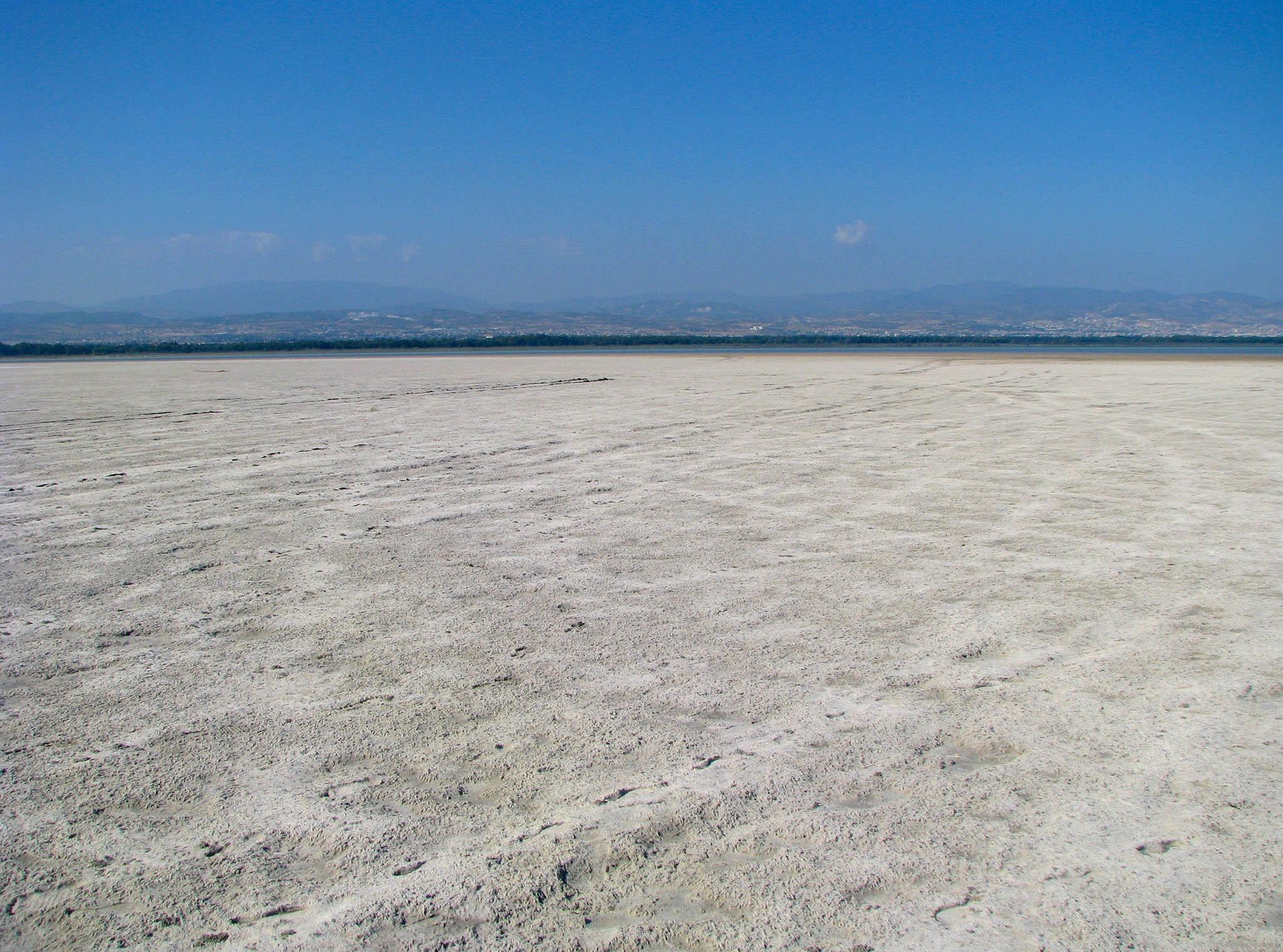 Соленое озеро летом