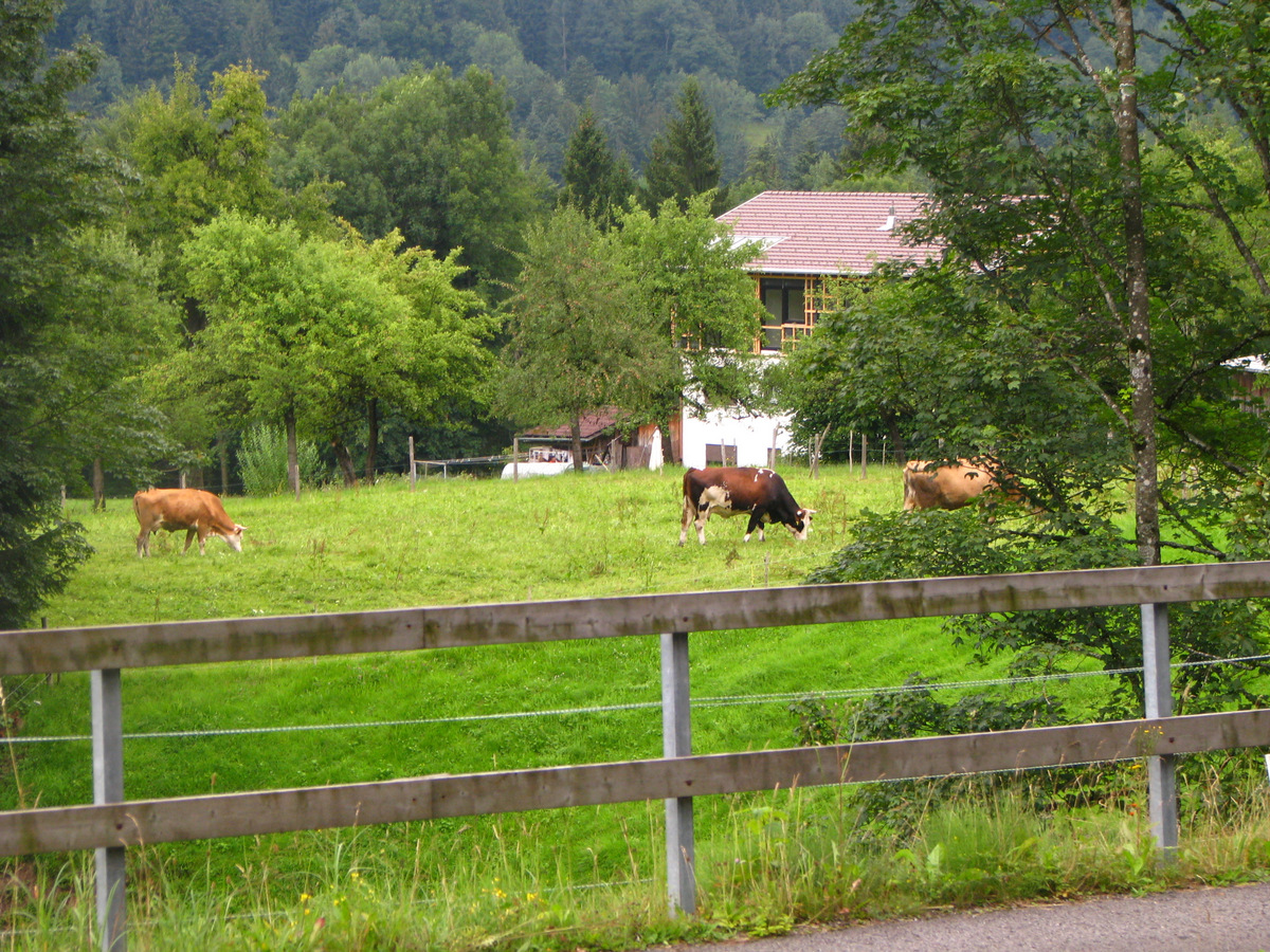 Австрийские пейзажи